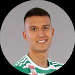 Dejan Ljubicic (SK Rapid)